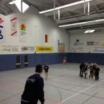 Halle BL F 2013-2